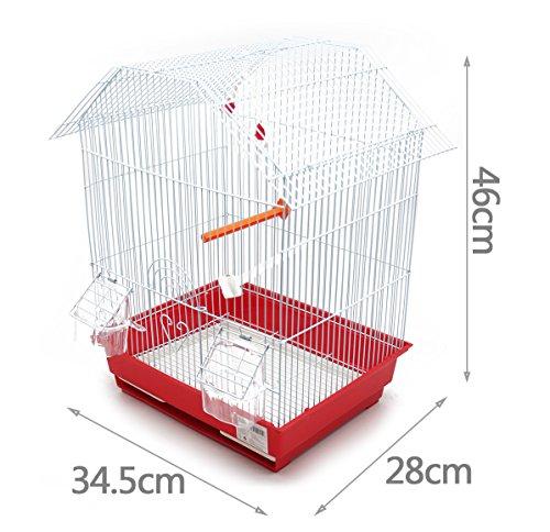 BPS Bird Cage Metal con Feeder Drinker Swing Jumper Color Bucket invia a caso 345 x 28 x 46 cm BPS1152