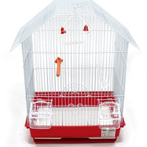 BPS Bird Cage Metal con Feeder Drinker Swing Jumper Color Bucket invia a caso 345 x 28 x 46 cm BPS1152