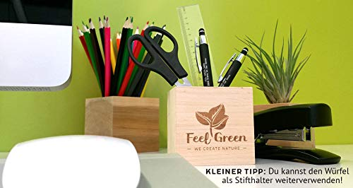 Feel Green Ecocube Girasole Certificato Biologico Idea Regalo sostenibile 100 Eco Friendly Grow Your OwnSet di Coltivazione Piante nel Dado in Legno Made in Austria