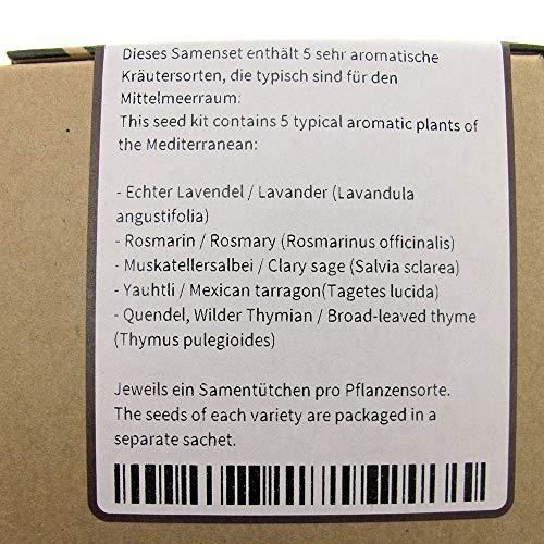 Giardino di erbe mediterranee  set regalo di semi con 5 piante aromatiche tipiche del Mediterraneo
