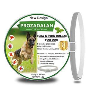 Collare Antipulci Cane Collare per Cani Antipulci e Zecche Regolabile Impermeabile Antiparassitario per Cani per Tutti i Tipi di Cani 8 Mesi di Efficacia Protezione 63cm Taglia Unica 1pack