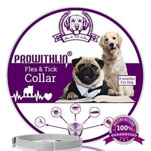 Collare antipulci e zecche per Cani Collare Regolabile Impermeabile Soluzione Naturale Contro i parassiti per Cani Adulti 63 cm 8 Mesi Taglia Unica per Tutti i Cani 1 Pacco