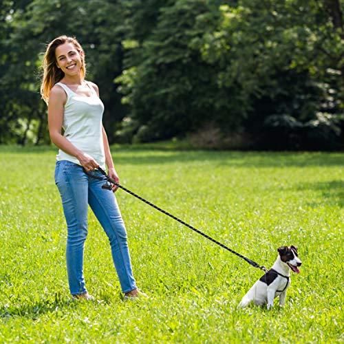 Docatgo Guinzaglio per Cani 15m Rotonda Cane Guinzaglio con Comoda Impugnatura Imbottita e Fili Altamente Riflettente per Cani di Taglia Media e Grande