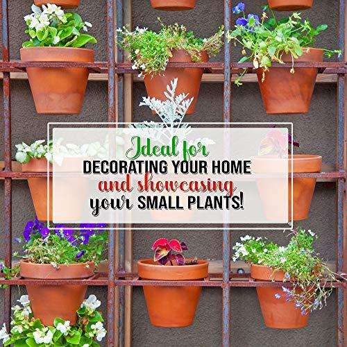 12 Vasi da Fiori di Terracotta Ceramica 8cm  Mini Cactus Piante Grasse Succulento Miniatura Vasi per Piccoli Impianti  Perfetto per Arti e Mestieri Matrimonio Bomboniere Decorazioni