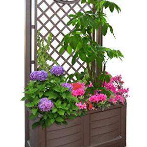 Bama Outdoor fioriera con Espalier 80x 425x 150cm Cocoa 80 cm
