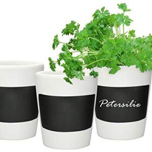 COMFOUR 3x Herb Pot  Il set di vasi per fiori pu essere etichettato con gesso  Decorazione in ceramica per la cucina 03 pezzi  vaso per erbe