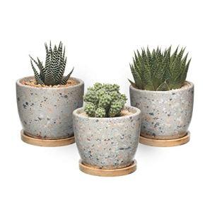 T4U Vaso di Cactus Succulente in Cemento Contenitore per Finestra in Vaso di Fioriera in Cemento con Vassoio in bamb per Drenaggio per la Decorazione Domestica Set di 3Grigio