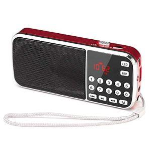 Radio FMMP3USBSDTF Portatile PRUNUS con la Funzione di Torcia Demergenza con Lantenna Nascosta Memorizzazione Automatica Delle Stazioni Radio Senza la Funzione di Memoria Manuale