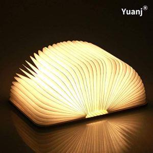 Lampada Libro USB Ricaricabile Lampada a Forma di Libro Luce LED di legno Decorativi Lampada da Tavolo 1000mAh Mini Lampada a Libro