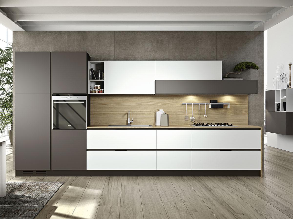 Cucina Lineare Moderna in Laccato Opaco Arredamento
