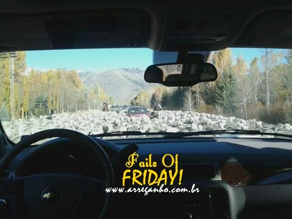 Fails of Friday #47