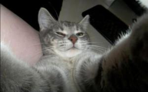 selfie03
