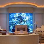 10 aquários incríveis para sua casa