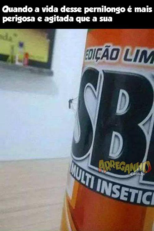 SBP, terrível contra os insetos