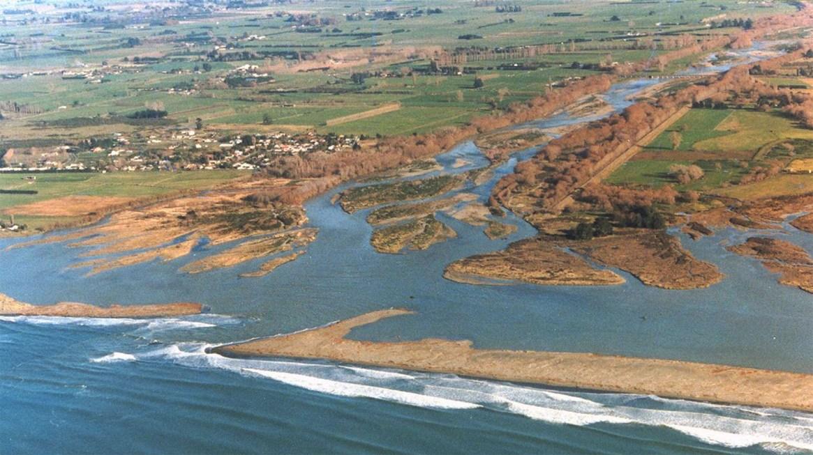 Ashley Estuary