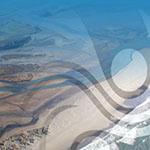 Ashley Rakahuri Estuary Bird Counts