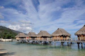 Moorea Pearl in Moorea, Tahiti