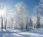 Tips for Running in Cold Weather Arrow Physical Therapy New Jersey