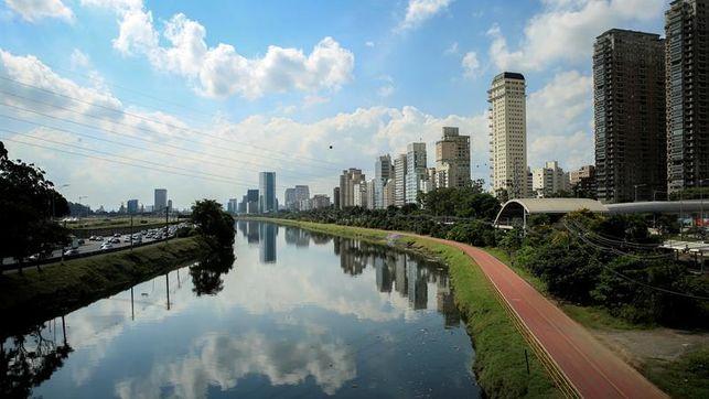 OMS: el estado de São Paulo es una área de riesgo para contraer la fiebre amarilla