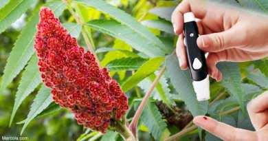 ¿Podría el zumaque (Rhus coriaria) beneficiar sus niveles de azúcar en la sangre?