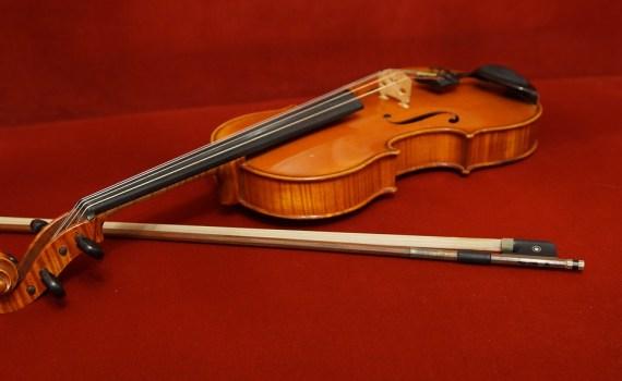 Corso di viola Napoli