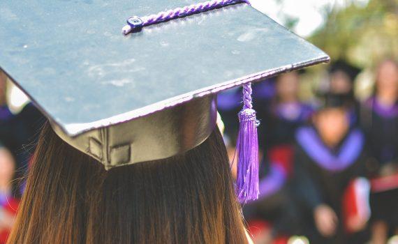 certificati universitari