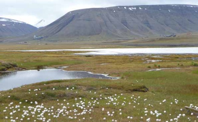 Spitzbergen Via Norway Longyearbyen Page