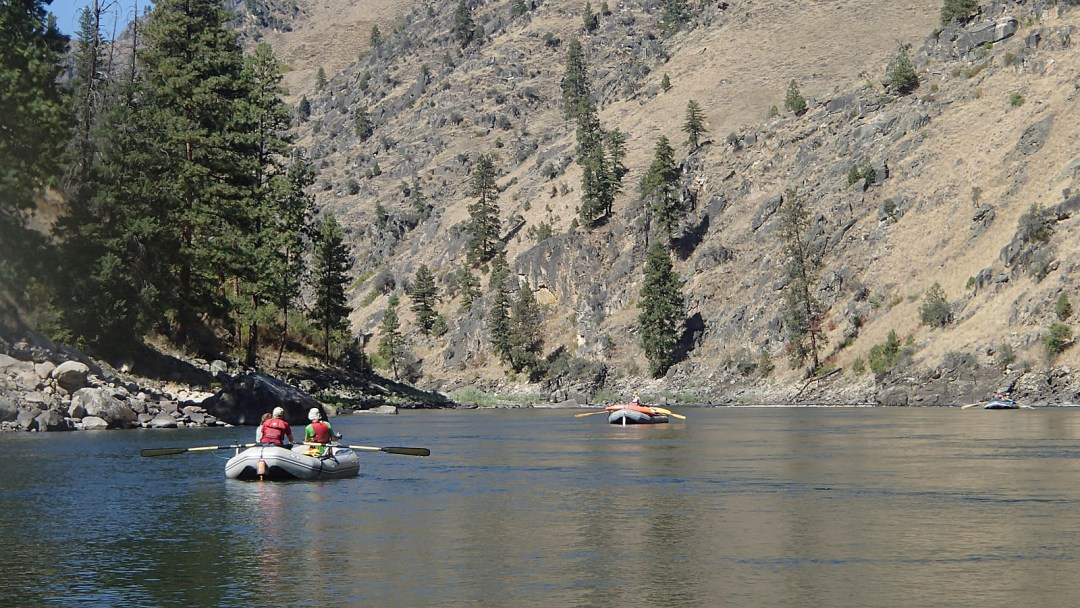 floating downriver the Idaho Rowing School on the Main Salmon with ARTA River Trips