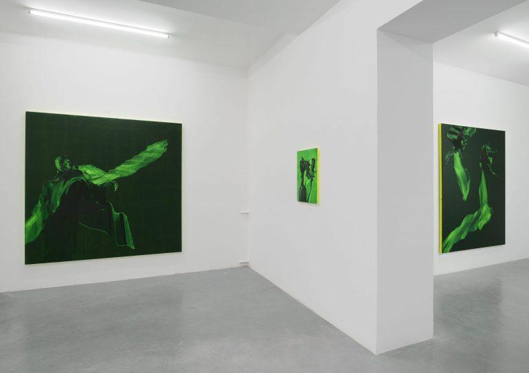 Galleria Mario Iannelli, Roma | exhibition view: Daniel Lergon, Unter Grün, 2018