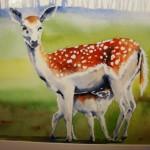 Two Deer watercolour