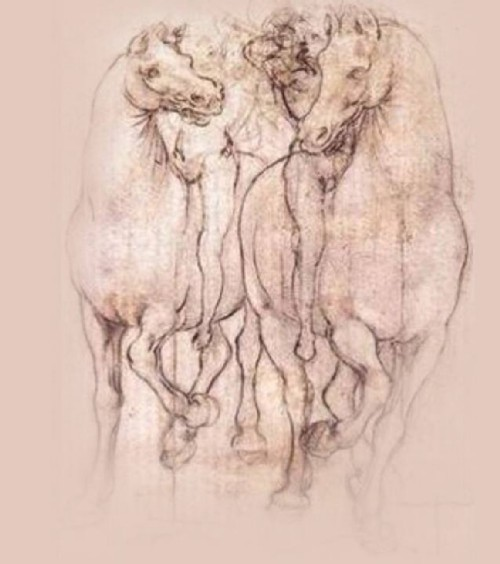 Leonardo_da_Vinci_disegno_cavalli