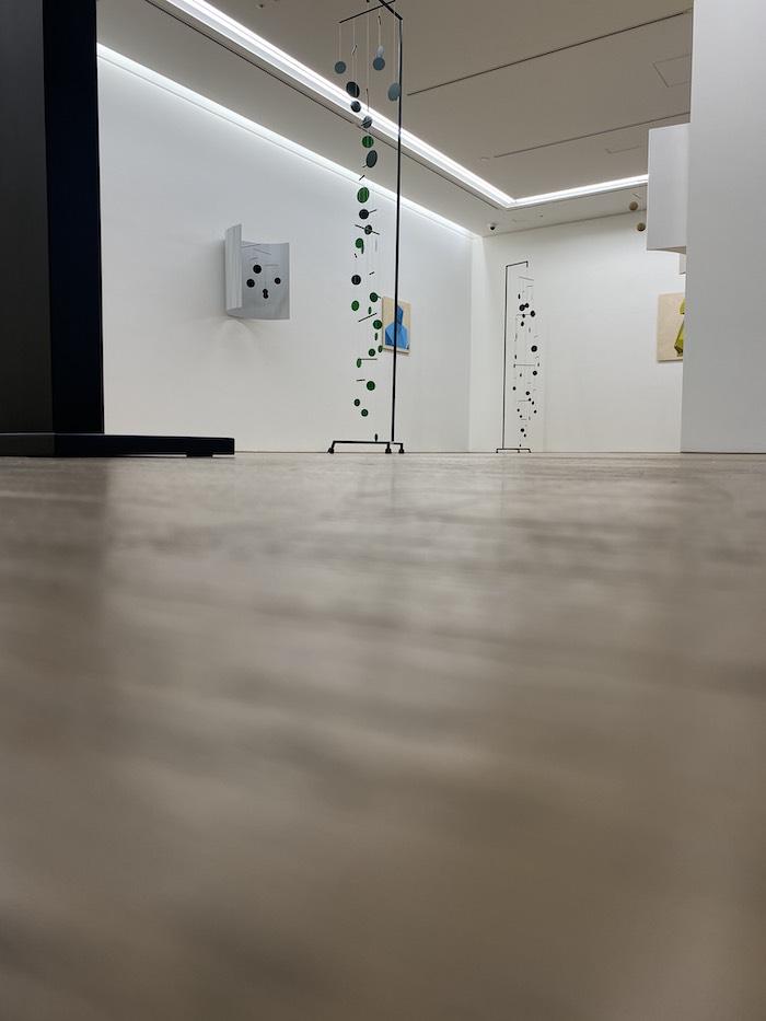 グザヴィエ・ヴェイヤン展「Chemin Vert(緑の小道)展示風景