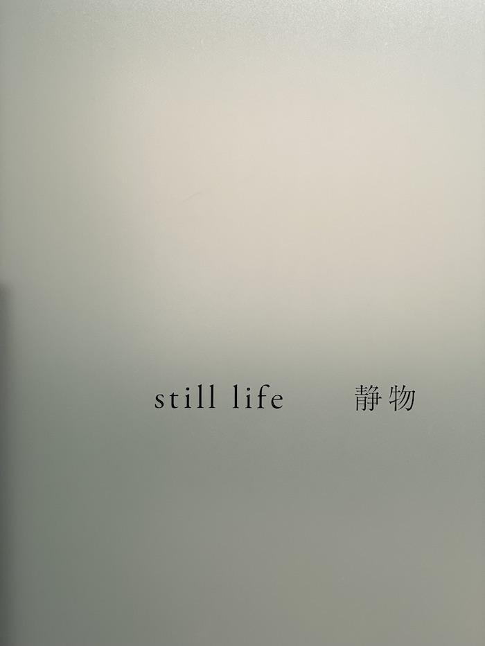 ギャラリー小柳「still life 静物」