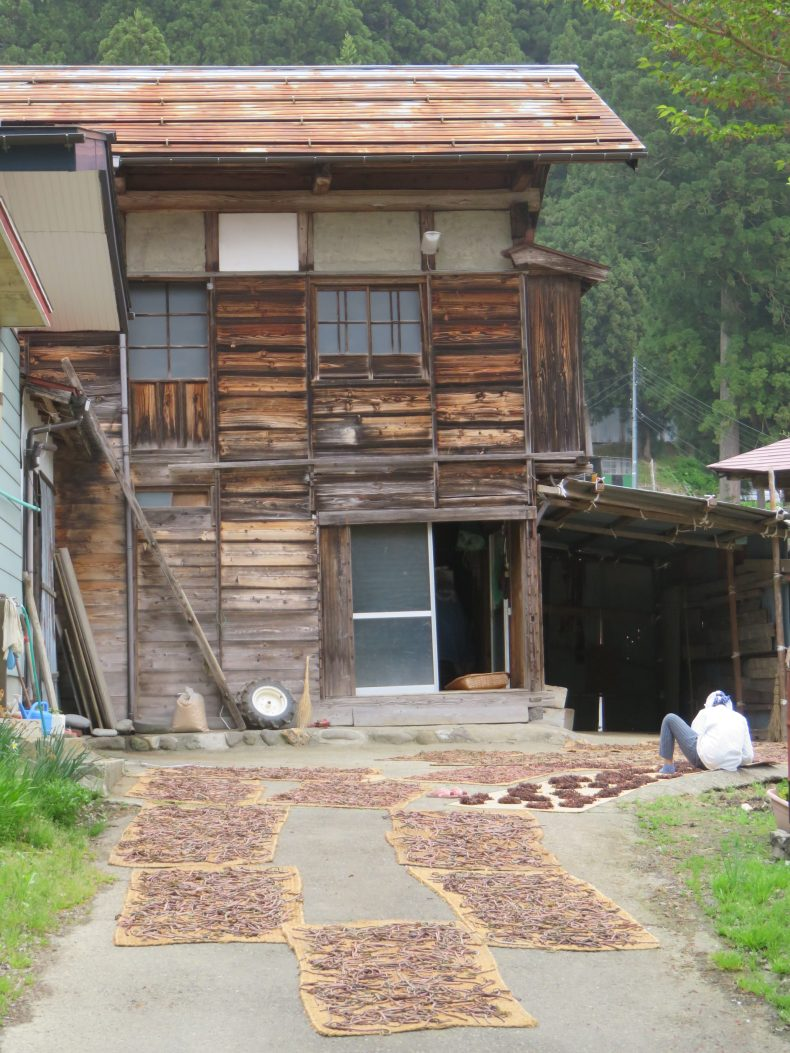 A deeply meditative way of life in rural Japan