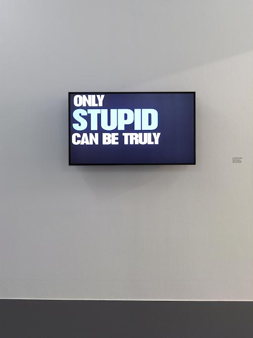STURTEVANT, Be Stupid, 2013 , Einkanal-Video /single-channel video, 1'57'', Farbe, Ton / color, sound, Leihgabe der Künstlerin / on loan from the artist Foto /photo: Simon Vogel