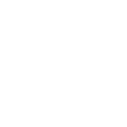 TEMP-FORD TRUCKS