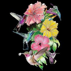 HUMMINGBIRDS RHINESTONES