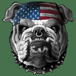 TEMP-AMERICAN BULLDOG