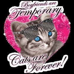 FOREVER CAT RHINESTONES