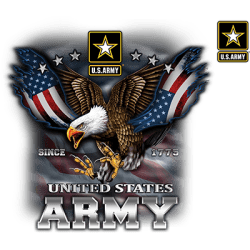 US ARMY EAGLE AND FLAG W/CREST