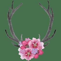 ANTLERS PINK FLOWERS