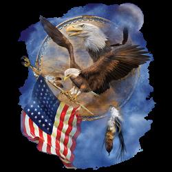 DC_FLIGHT FOR FREEDOM