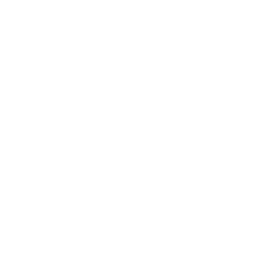 MAGA 2-0