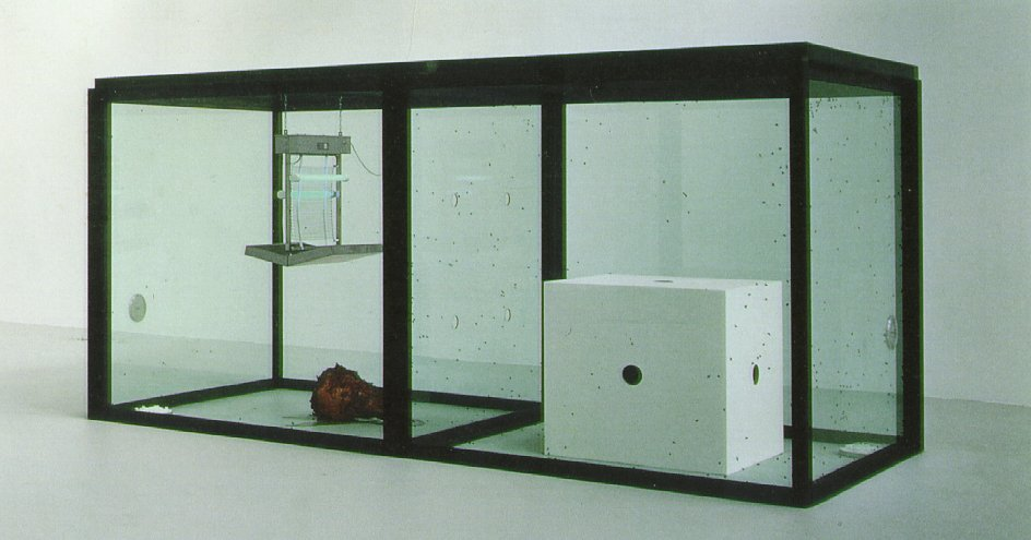 Damien Hirst A Thousand Years