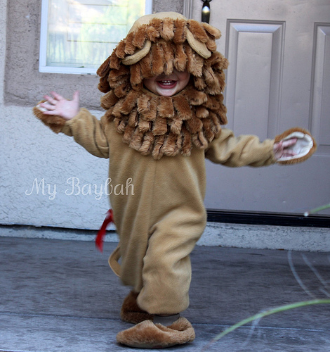 Toddler Costume & Lilu0027 Lion Costume Review