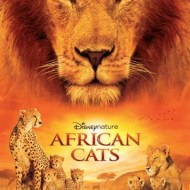 African Cats by Disneynature- Opens in Theaters on Earth Day!