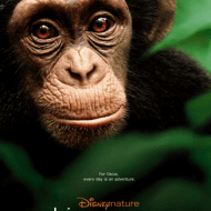 Disneynature Chimpanzee Activity Pack and Teachers Guide