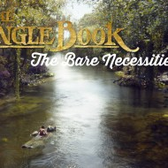 The Bare Necessities of Family