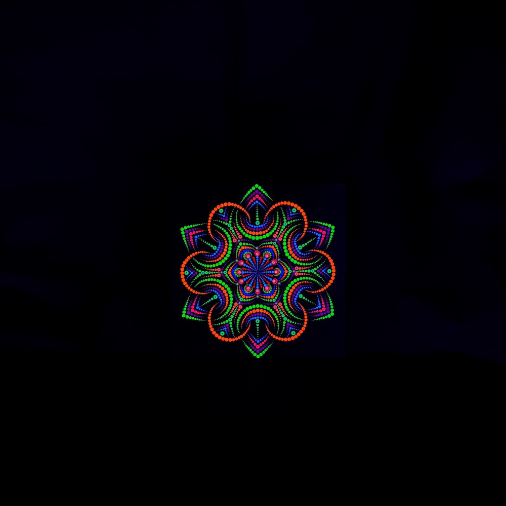 Night Flower UV Dot Painting