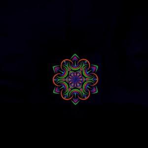 УФ-картина ночной цветок (холст 20см х 20см)